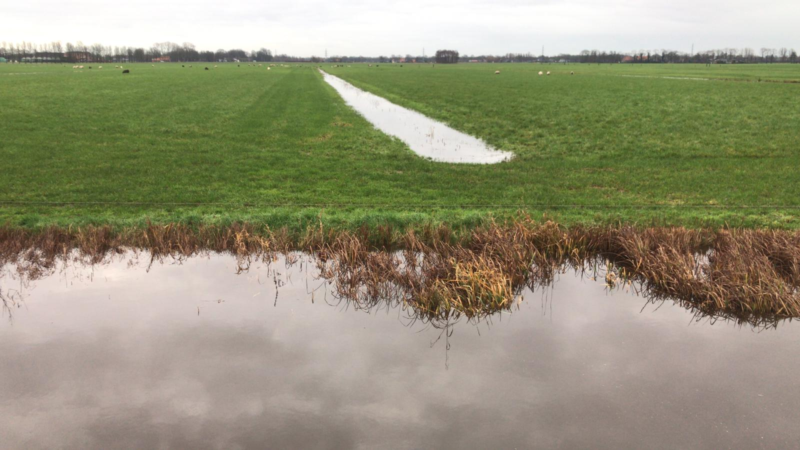 Waterschap flink in touw, een keer zoveel regen dan was voorspeld
