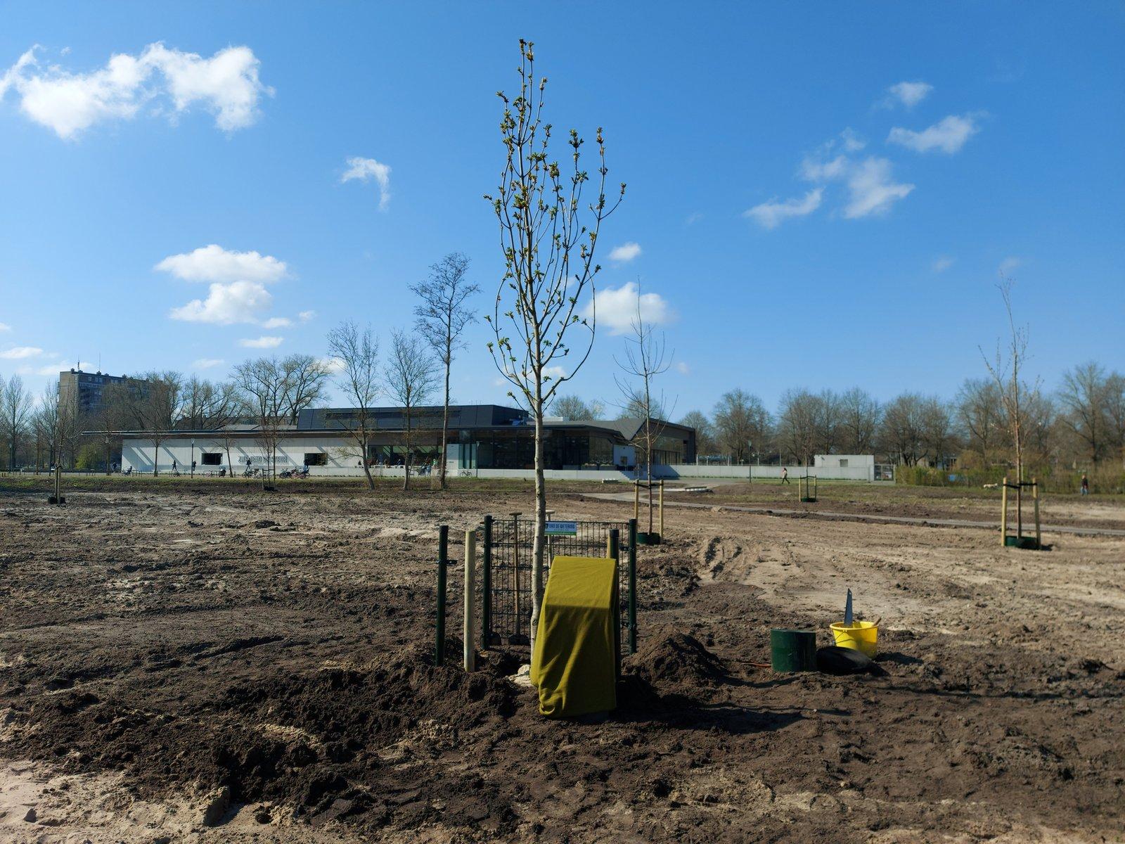 Locoburgemeester Jan Peter van der Sluis plant Anne Frank boom